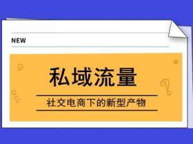 """私域流量-社交电商下的""""新型产物"""""""